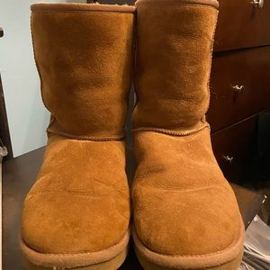 Chestnut classic short Ugg boots